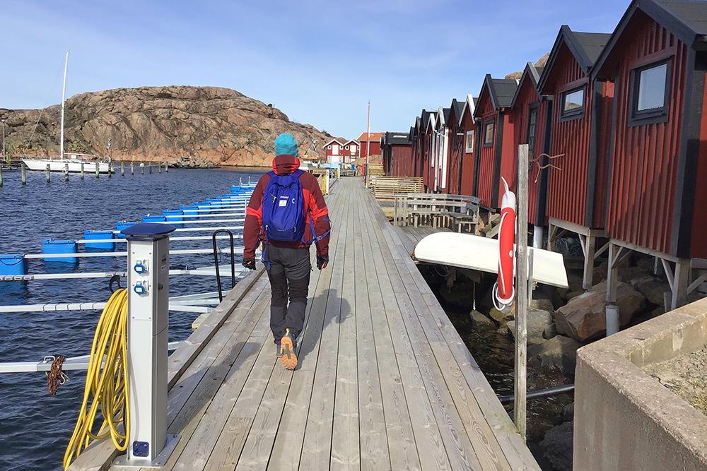 Vandring Med Guide Lysekil